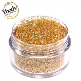 Paillettes holographique or Ybody (5g)